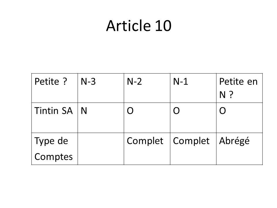 Article 10 Petite ?N-3N-2N-1 Petite en N ? Tintin SANOOO Type de Comptes Complet Abrégé