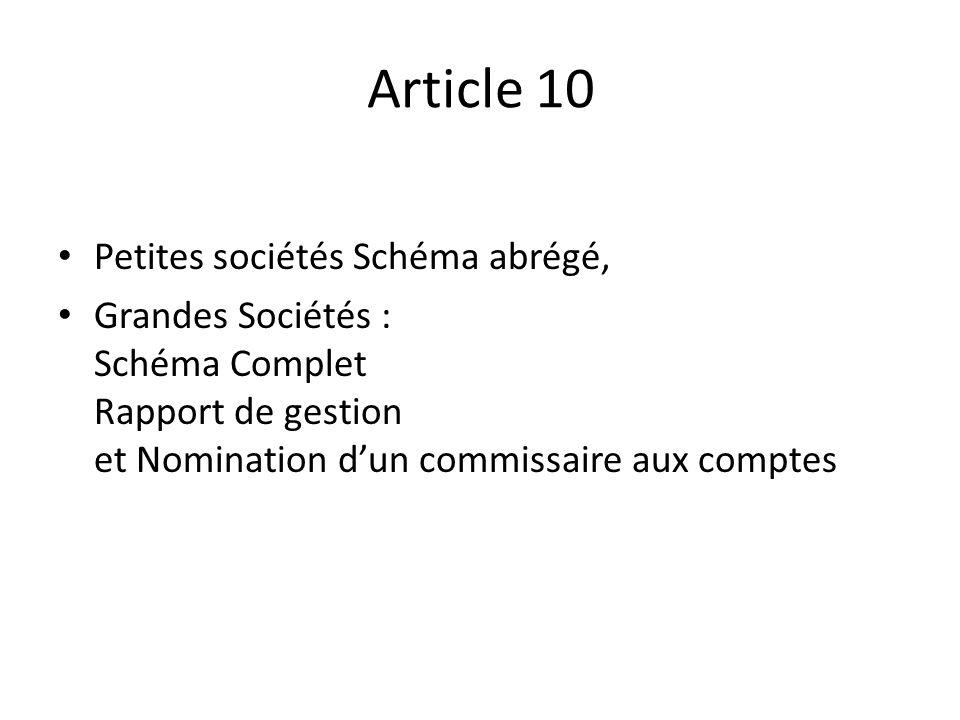 Article 10 Petites sociétés Schéma abrégé, Grandes Sociétés : Schéma Complet Rapport de gestion et Nomination dun commissaire aux comptes