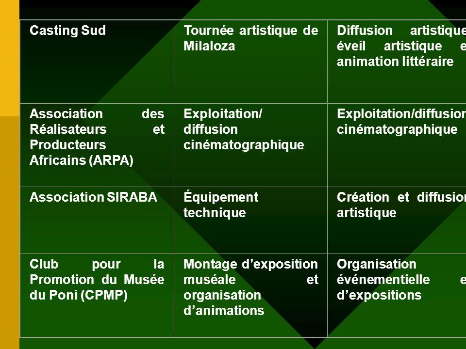 DésignationDomaines soutenus Activités nouvelles développées Nuits Atypiques de Koudougou Scénographie, exposition, secrétariat Appui technique et mat