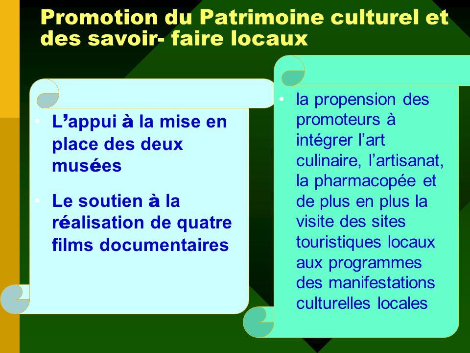 Promotion des Identités culturelles locales Les initiatives de sauvegarde, de conservation et de promotion des masques Les initiatives locales de prom