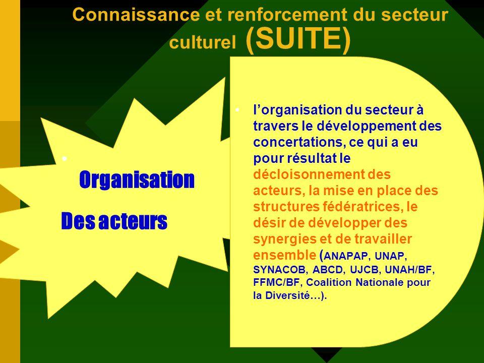 Connaissance et renforcement du secteur culturel (SUITE) Expertis e nationale prise en compte effective du secteur culturel dans les domaines dinterve