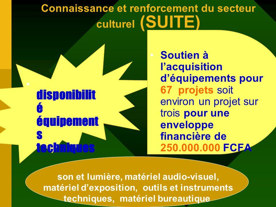Connaissance et renforcement du secteur culturel (SUITE) Organisation Des acteurs lorganisation du secteur à travers le développement des concertation