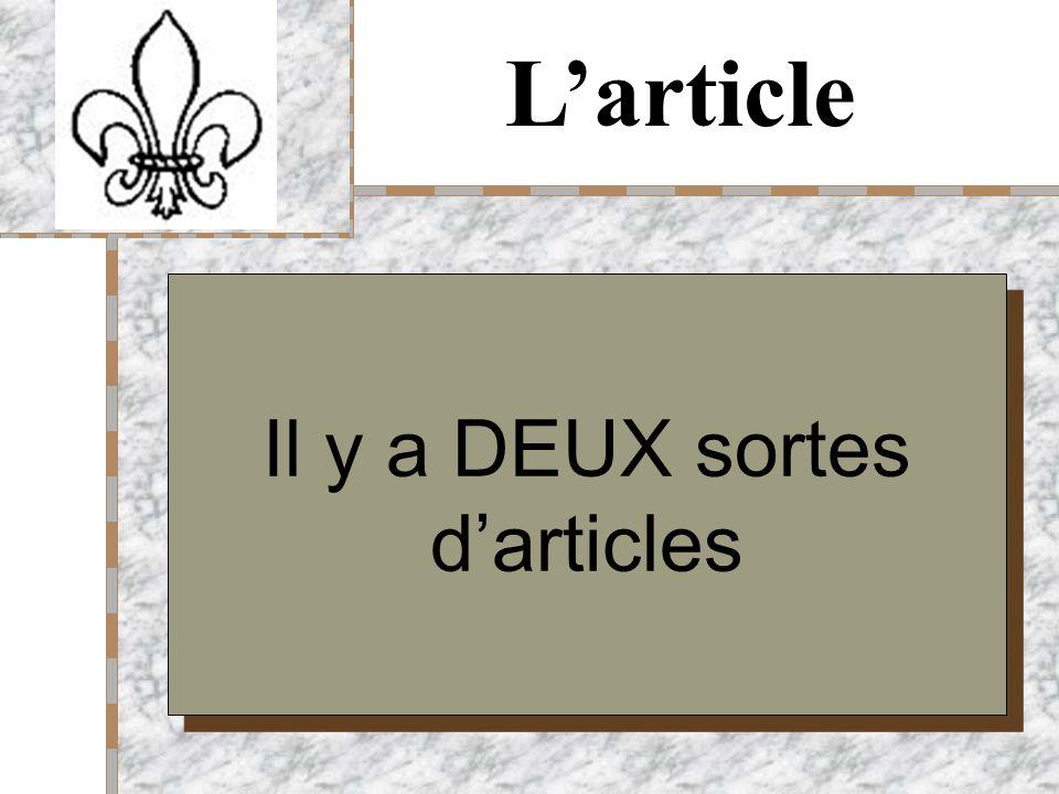 Your Logo Here larticle défini larticle indéfini et