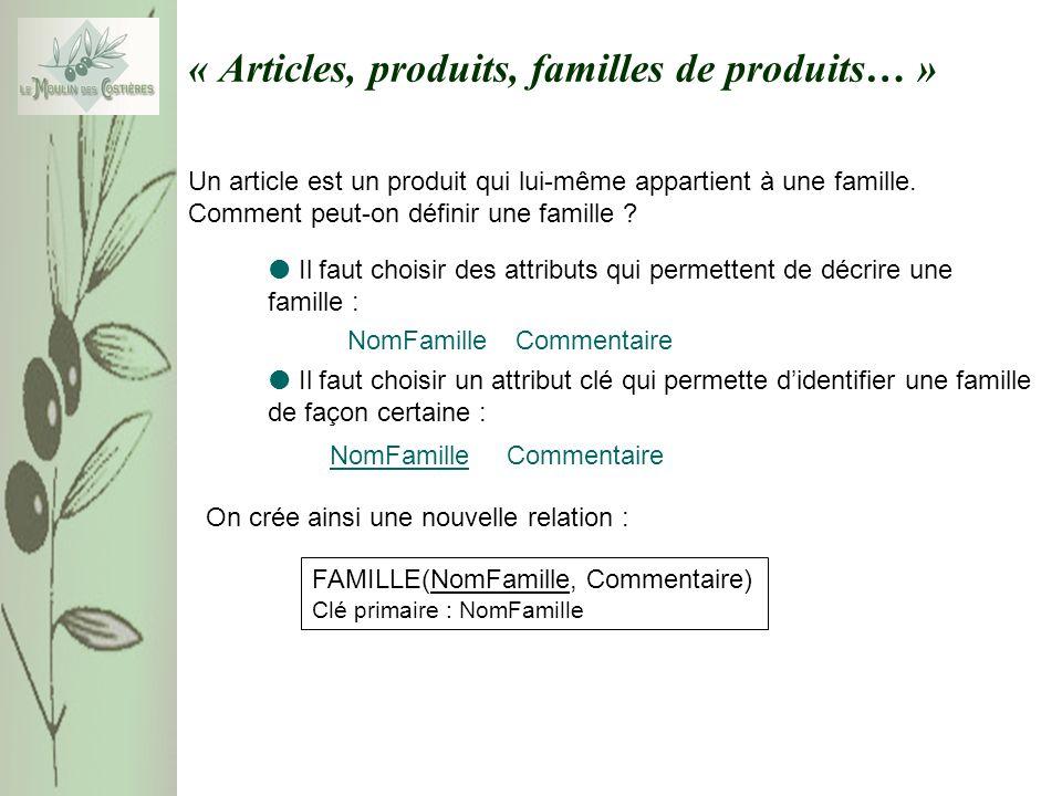 « Articles, produits, familles de produits… » Un article est un produit qui lui-même appartient à une famille. Comment peut-on définir une famille ? C