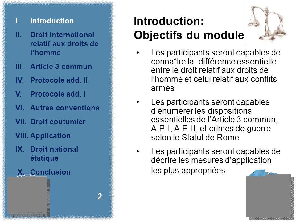 II.Le droit coutumier international relatif aux droits de lhomme 23 I.Introduction II.
