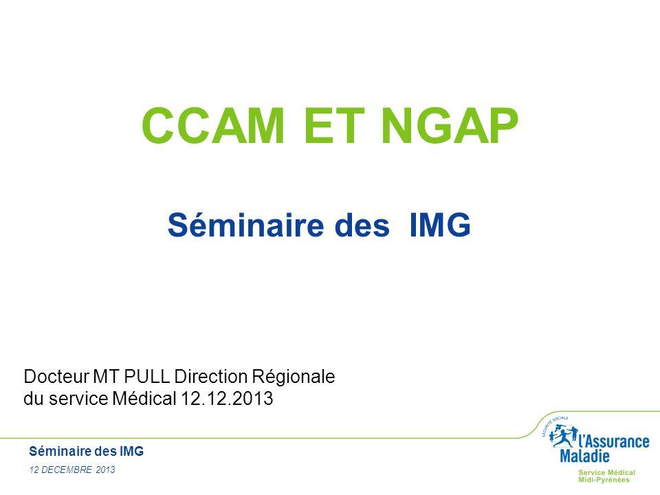 Séminaire des IMG 12 DECEMBRE 2013 CCAM ET NGAP Séminaire des IMG Docteur MT PULL Direction Régionale du service Médical 12.12.2013