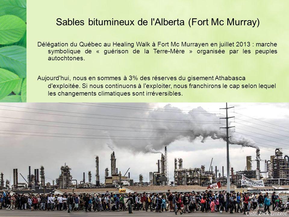 Exploitation des sables bitumineux à Fort Mc Murray Production = dégradation de l environnement.