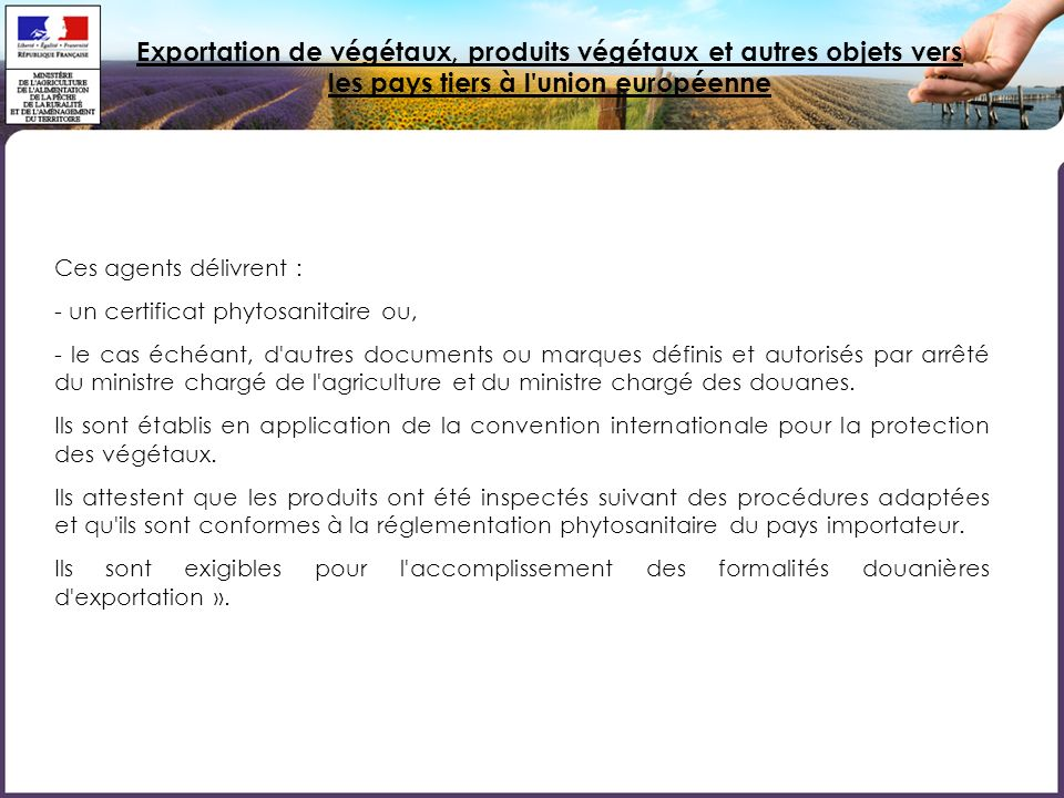 Exportation de végétaux, produits végétaux et autres objets vers les pays tiers à l'union européenne Ces agents délivrent : - un certificat phytosanit