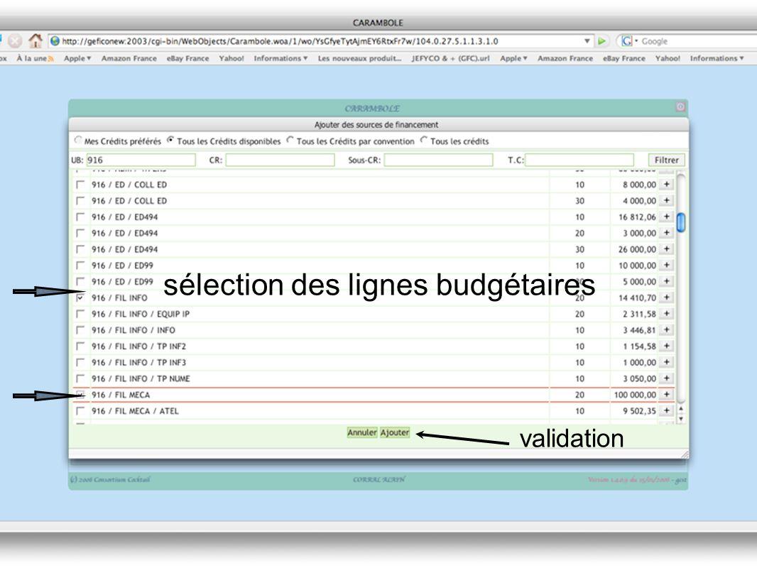 sélection des lignes budgétaires validation