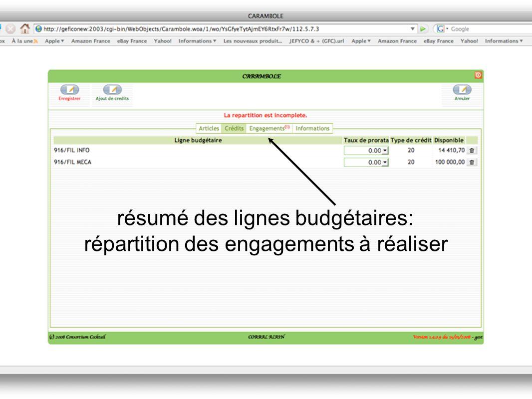 résumé des lignes budgétaires: répartition des engagements à réaliser