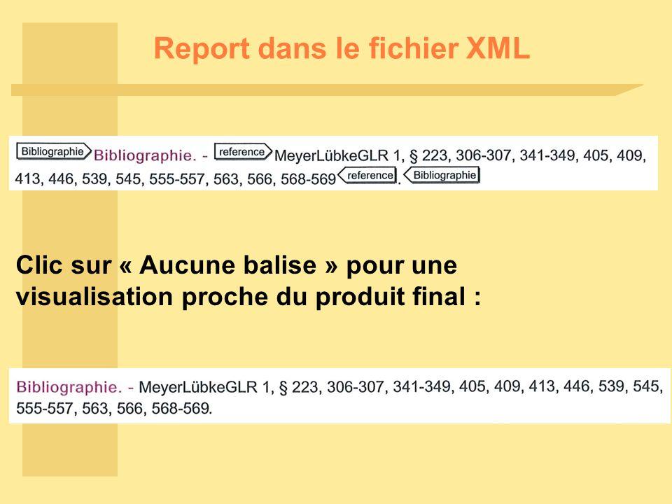 Report dans le fichier XML Clic sur « Aucune balise » pour une visualisation proche du produit final :
