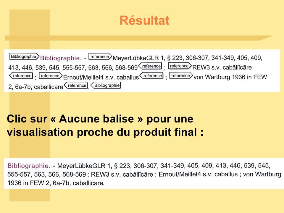 Résultat Clic sur « Aucune balise » pour une visualisation proche du produit final :