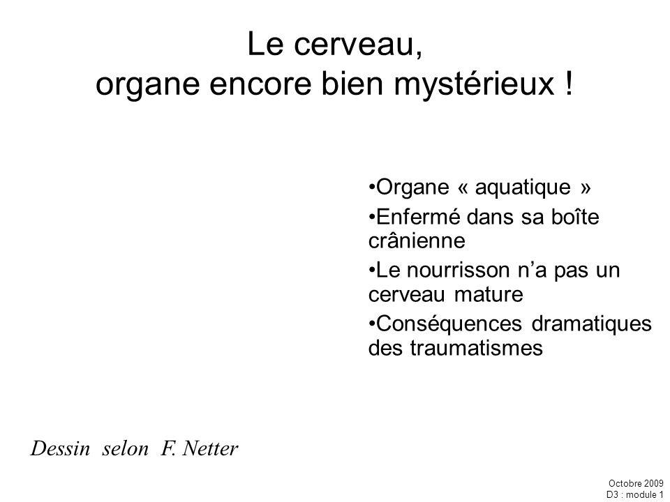 Octobre 2009 D3 : module 1 Le cerveau, organe encore bien mystérieux ! Organe « aquatique » Enfermé dans sa boîte crânienne Le nourrisson na pas un ce