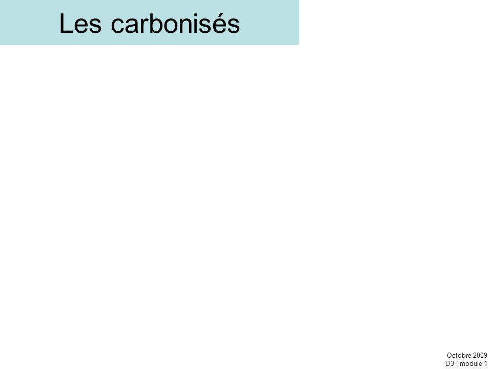 Octobre 2009 D3 : module 1 Les carbonisés