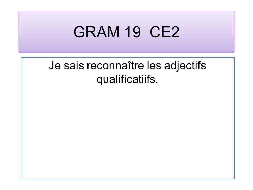 GRAM 19 CE2 Je sais reconnaître les adjectifs qualificatiifs.