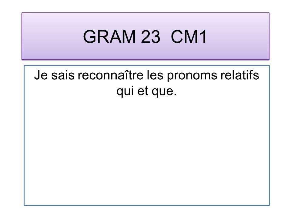 GRAM 23 CM1 Je sais reconnaître les pronoms relatifs qui et que.