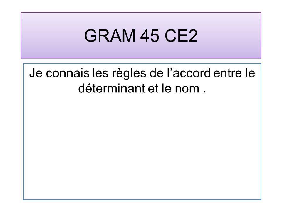 GRAM 45 CE2 Je connais les règles de laccord entre le déterminant et le nom.