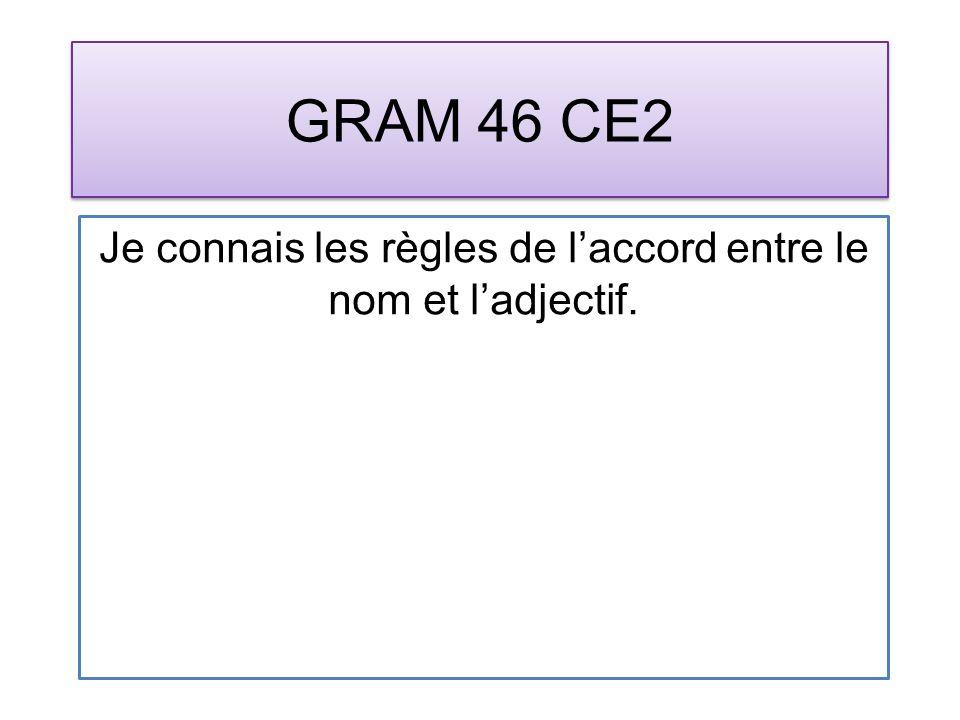 GRAM 46 CE2 Je connais les règles de laccord entre le nom et ladjectif.