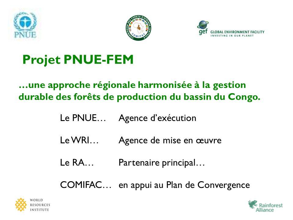 Projet PNUE-FEM …une approche régionale harmonisée à la gestion durable des forêts de production du bassin du Congo. Le PNUE…Agence dexécution Le WRI…