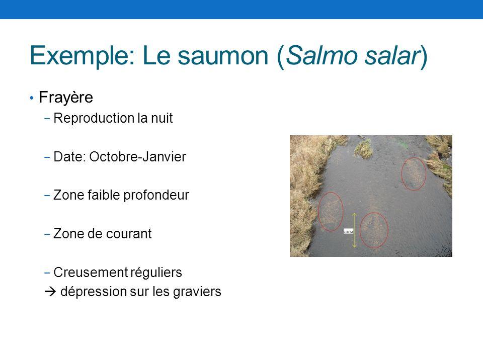 Exemple: Le saumon (Salmo salar) Frayère Reproduction la nuit Date: Octobre-Janvier Zone faible profondeur Zone de courant Creusement réguliers dépres