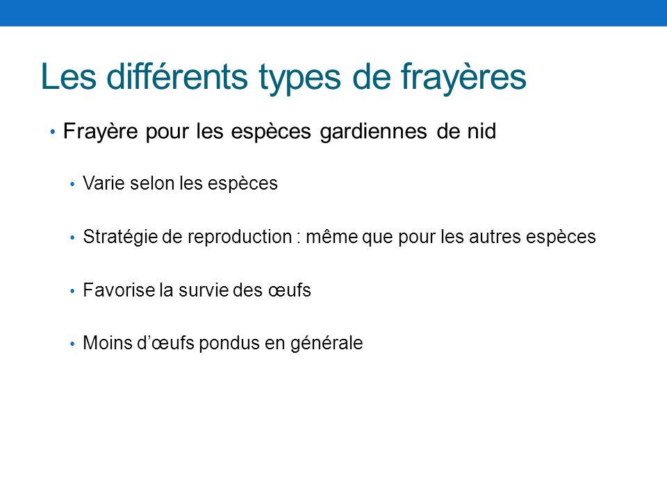 Les différents types de frayères Varie selon les espèces Stratégie de reproduction : même que pour les autres espèces Favorise la survie des œufs Moin