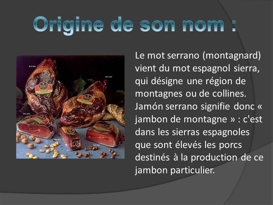 Les racines de la production et de la consommation du jambon serrano remontent à lAntiquité, où le jambon était élaboré artisanalement dans les régions montagneuses espagnoles avec des climats froids pendant lhiver et secs pendant lété.