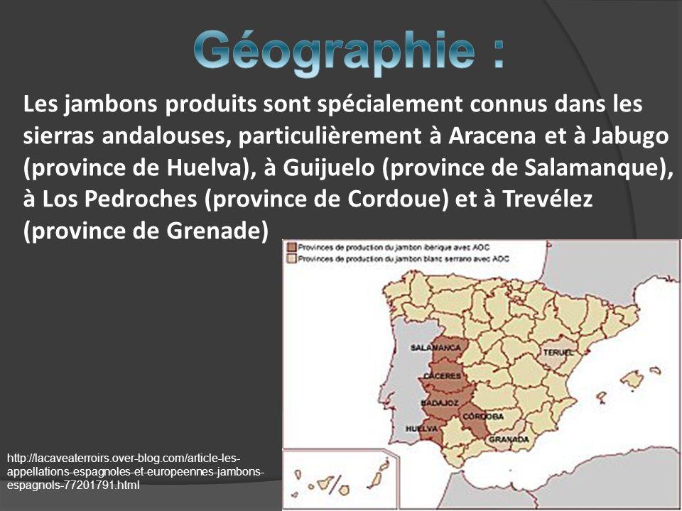 Les jambons produits sont spécialement connus dans les sierras andalouses, particulièrement à Aracena et à Jabugo (province de Huelva), à Guijuelo (pr
