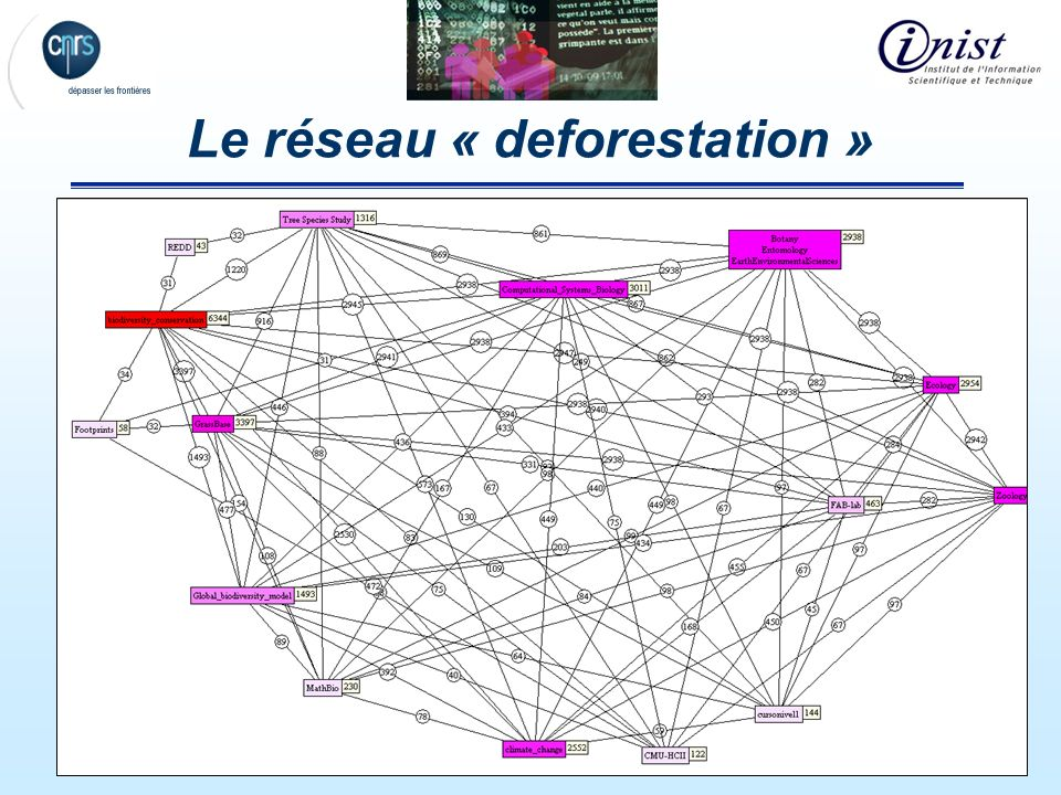 26 Le réseau « deforestation »