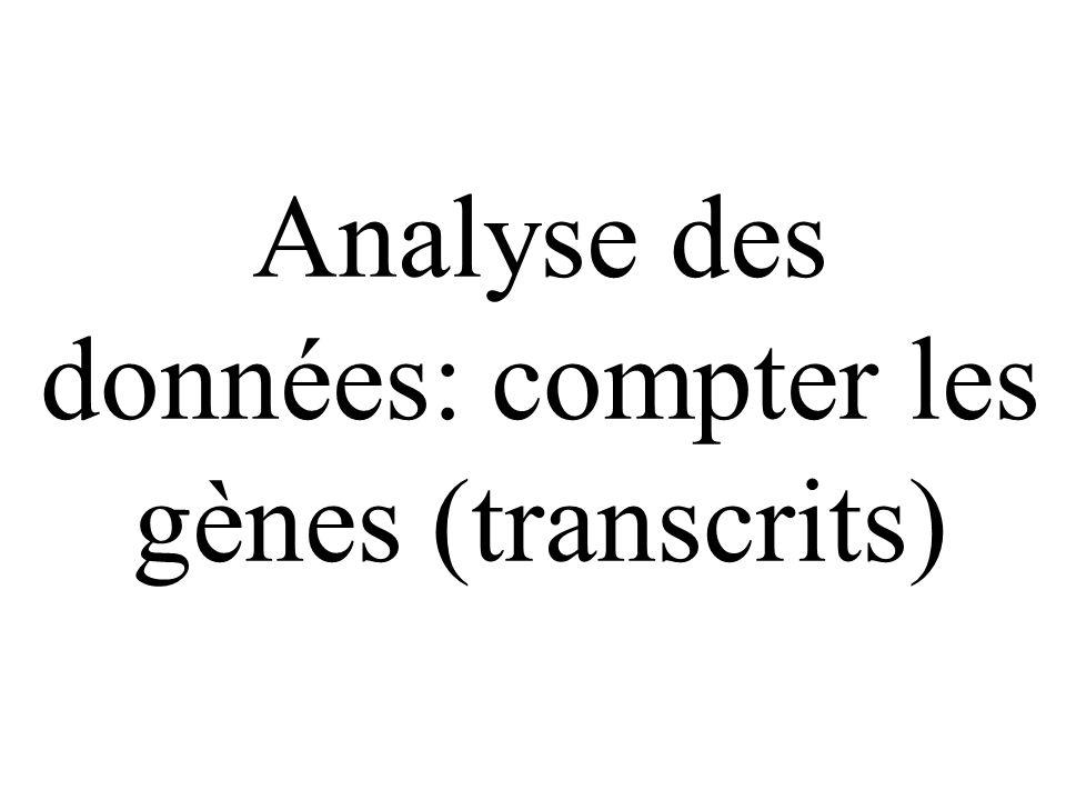 Analyse des données: compter les gènes (transcrits)