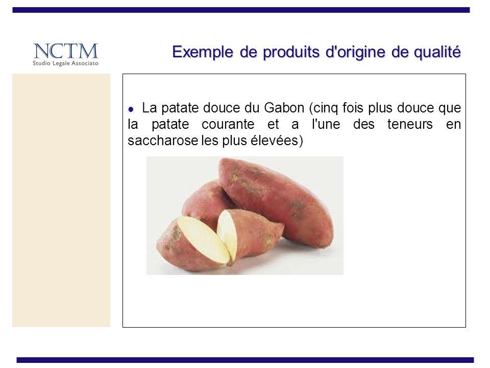 Exemple de produits d origine de qualité La patate douce du Gabon (cinq fois plus douce que la patate courante et a l une des teneurs en saccharose les plus élevées)