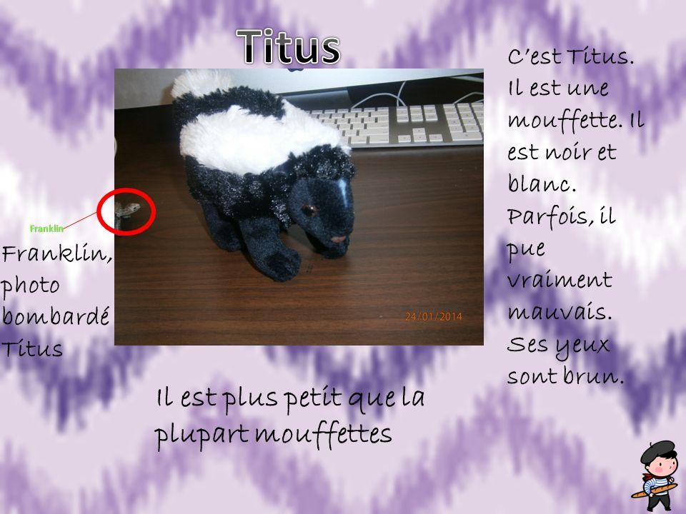 Cest Titus. Il est une mouffette. Il est noir et blanc. Parfois, il pue vraiment mauvais. Ses yeux sont brun. Franklin, photo bombardé Titus Il est pl