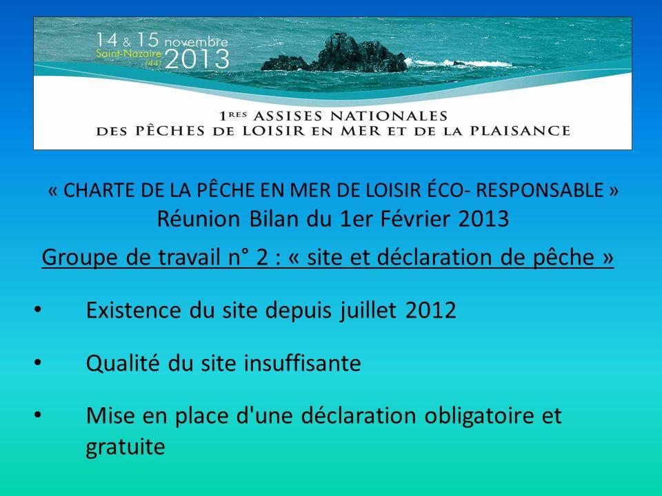 « CHARTE DE LA PÊCHE EN MER DE LOISIR ÉCO- RESPONSABLE » Réunion Bilan du 1er Février 2013 Groupe de travail n° 2 : « site et déclaration de pêche » E