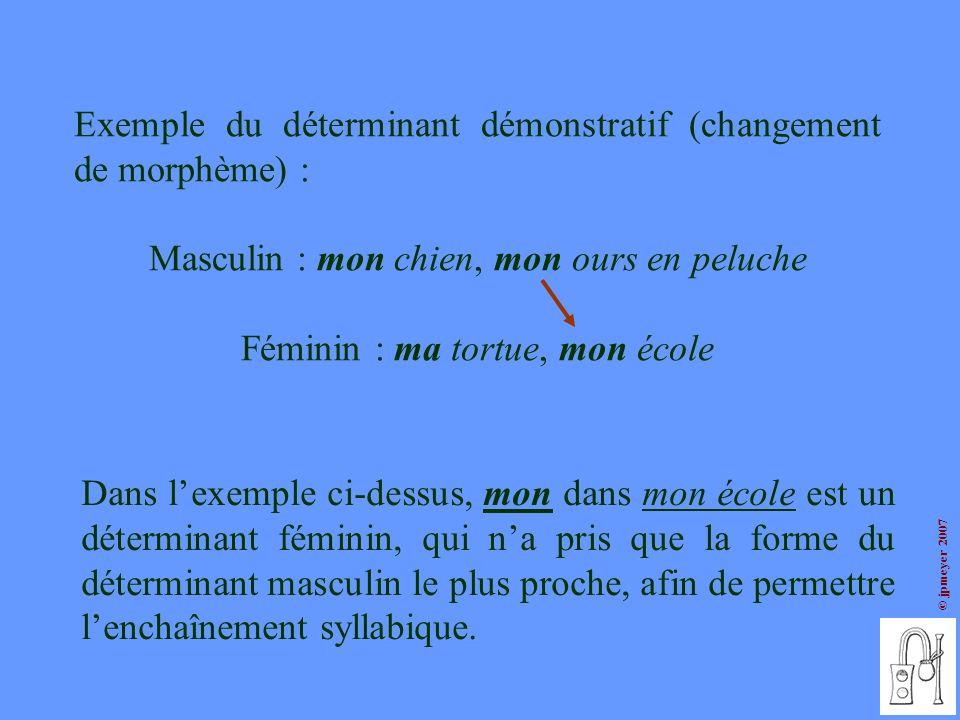 © jpmeyer 2007 Exemple du déterminant démonstratif (changement de morphème) : Masculin : mon chien, mon ours en peluche Féminin : ma tortue, mon école