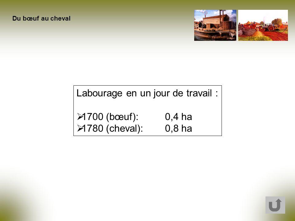 Labourage en un jour de travail : 1700 (bœuf):0,4 ha 1780 (cheval): 0,8 ha Du bœuf au cheval