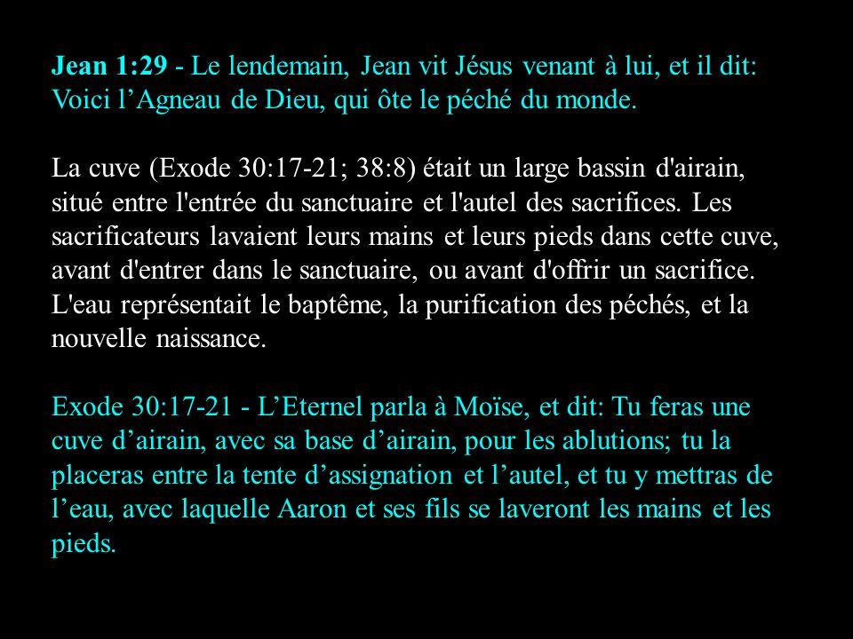 Jean 1:29 - Le lendemain, Jean vit Jésus venant à lui, et il dit: Voici lAgneau de Dieu, qui ôte le péché du monde. La cuve (Exode 30:17-21; 38:8) éta