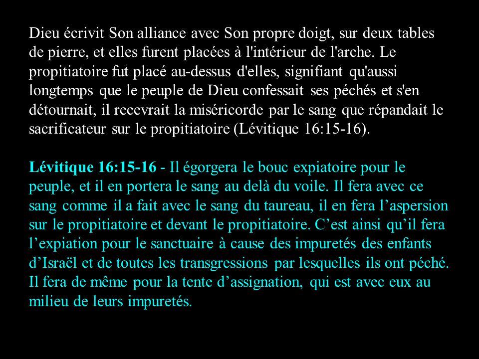 Dieu écrivit Son alliance avec Son propre doigt, sur deux tables de pierre, et elles furent placées à l'intérieur de l'arche. Le propitiatoire fut pla