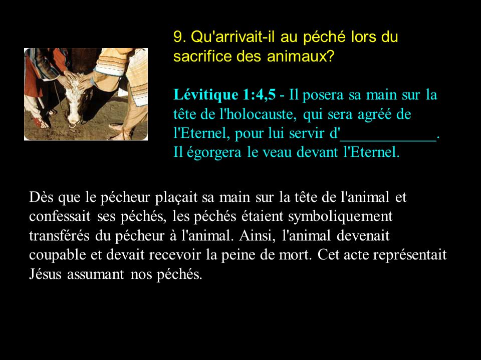 9. Qu'arrivait-il au péché lors du sacrifice des animaux? Lévitique 1:4,5 - Il posera sa main sur la tête de l'holocauste, qui sera agréé de l'Eternel
