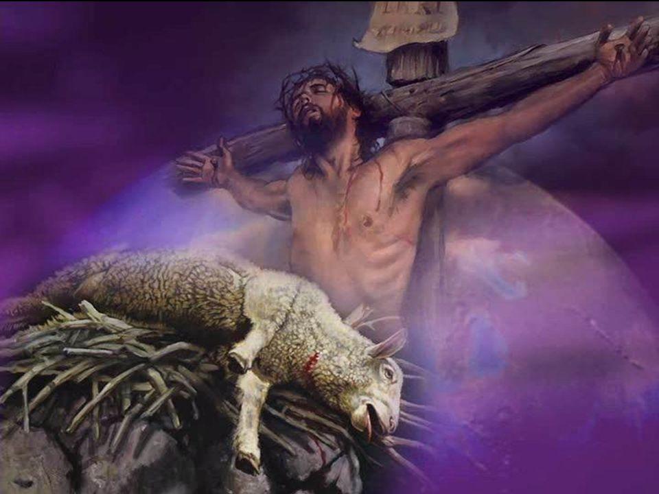10.Qu arrivait-il au péché, lorsque des animaux étaient sacrifiés pour toute l assemblée.