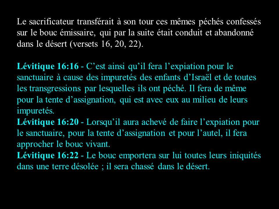 Le sacrificateur transférait à son tour ces mêmes péchés confessés sur le bouc émissaire, qui par la suite était conduit et abandonné dans le désert (