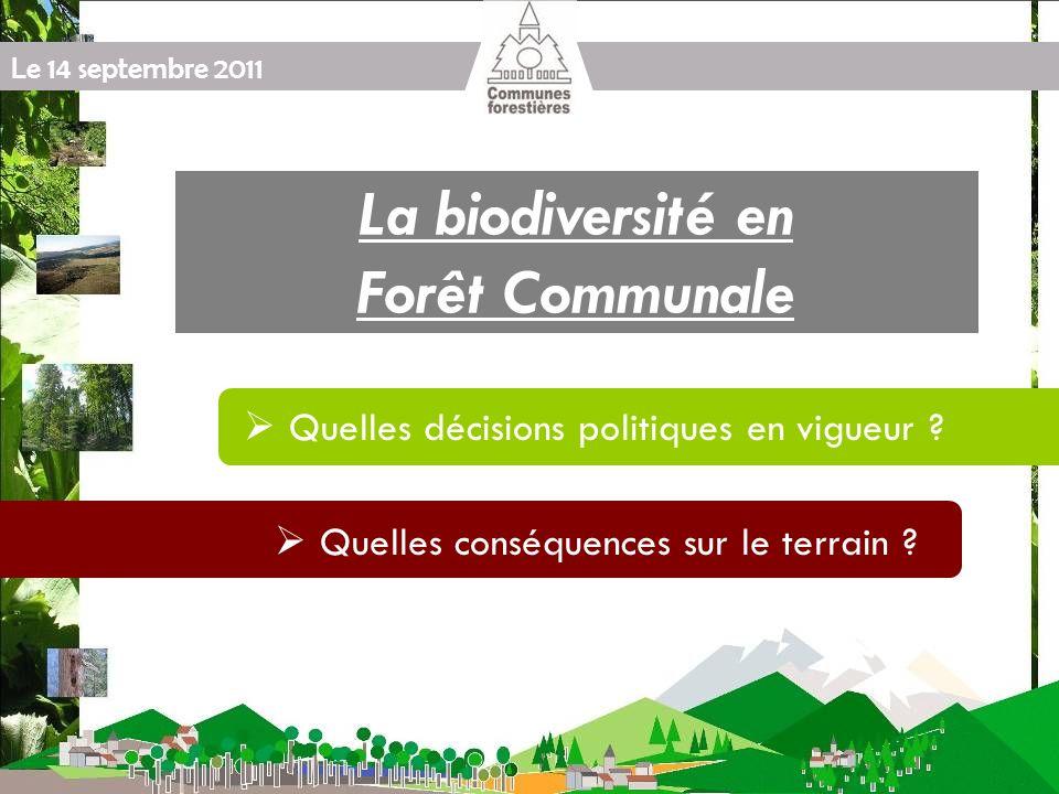 Le 14 septembre 2011 Réalisé par lONF Site Natura 2000 en forêt Prise en compte dans le document daménagement forestier Conformité avec les orientations du DOCOB (el la charte Natura2000) Les travaux des contrats Natura 2000 sont inclus dans le programme de travaux Analyse des incompatibilités Modification ou révision si nécessaire Approbation au titre de larticle L.11 = dispense de lévaluation dincidence Natura 2000 dans la gestion forestière