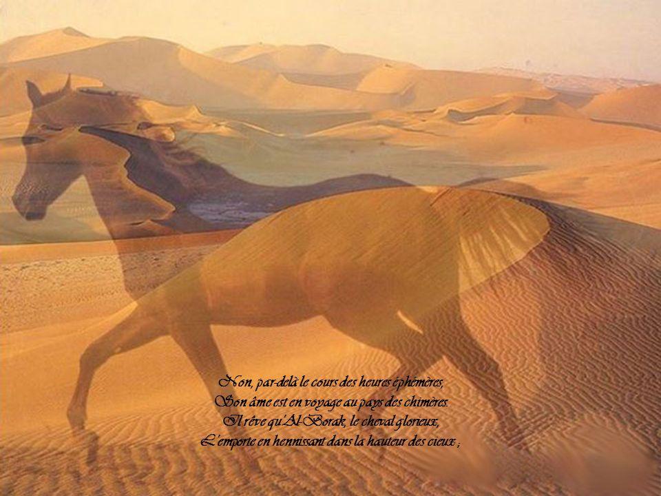 Non, par-delà le cours des heures éphémères, Son âme est en voyage au pays des chimères.