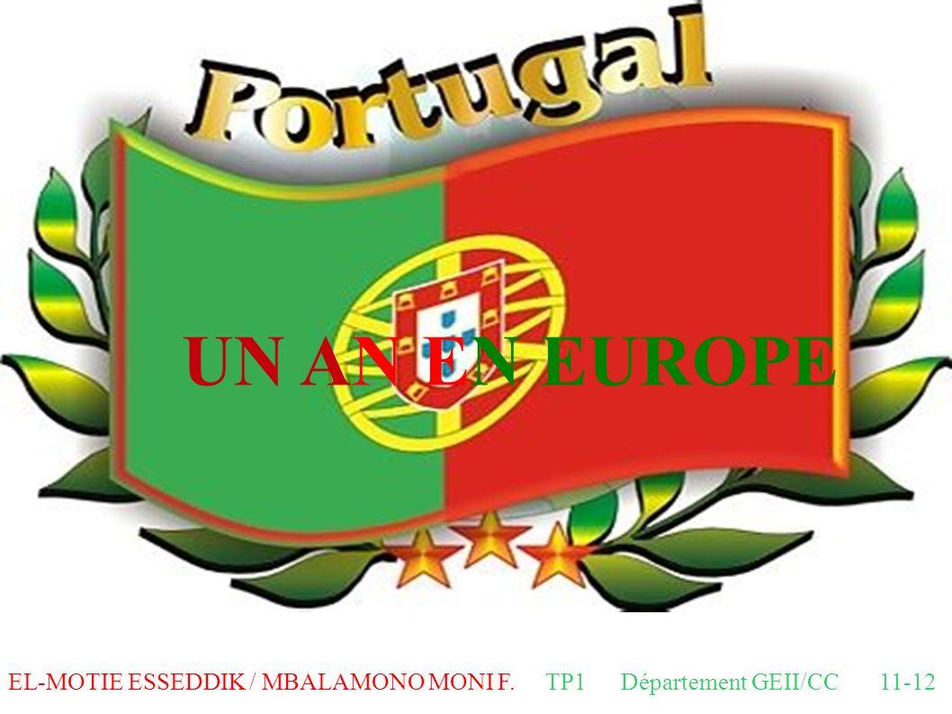 UN AN EN EUROPE EL-MOTIE ESSEDDIK / MBALAMONO MONI F. TP1 Département GEII/CC 11-12