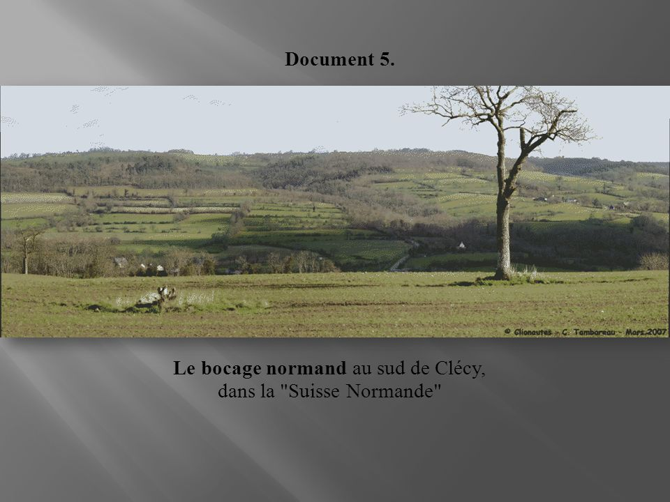 Le bocage normand au sud de Clécy, dans la