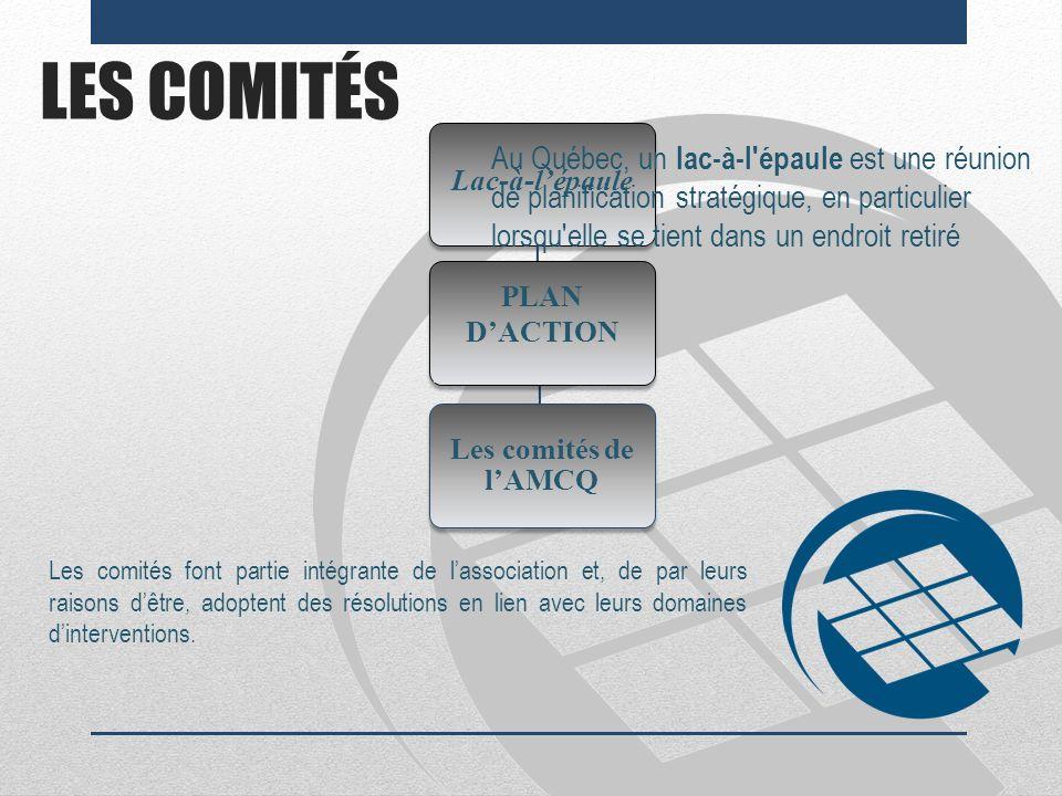 LES COMITÉS Les comités font partie intégrante de lassociation et, de par leurs raisons dêtre, adoptent des résolutions en lien avec leurs domaines di