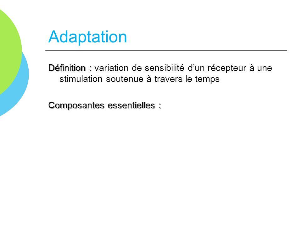 Adaptation Définition : Définition : variation de sensibilité dun récepteur à une stimulation soutenue à travers le temps Composantes essentielles : -