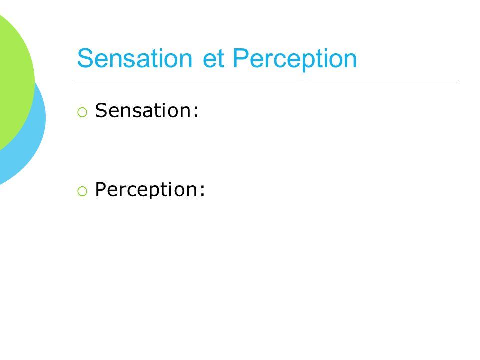 Sensation et Perception Sensation: Stimulation physique des récepteurs sensoriels Perception: Processus dintégration et dinterprétation de linformatio
