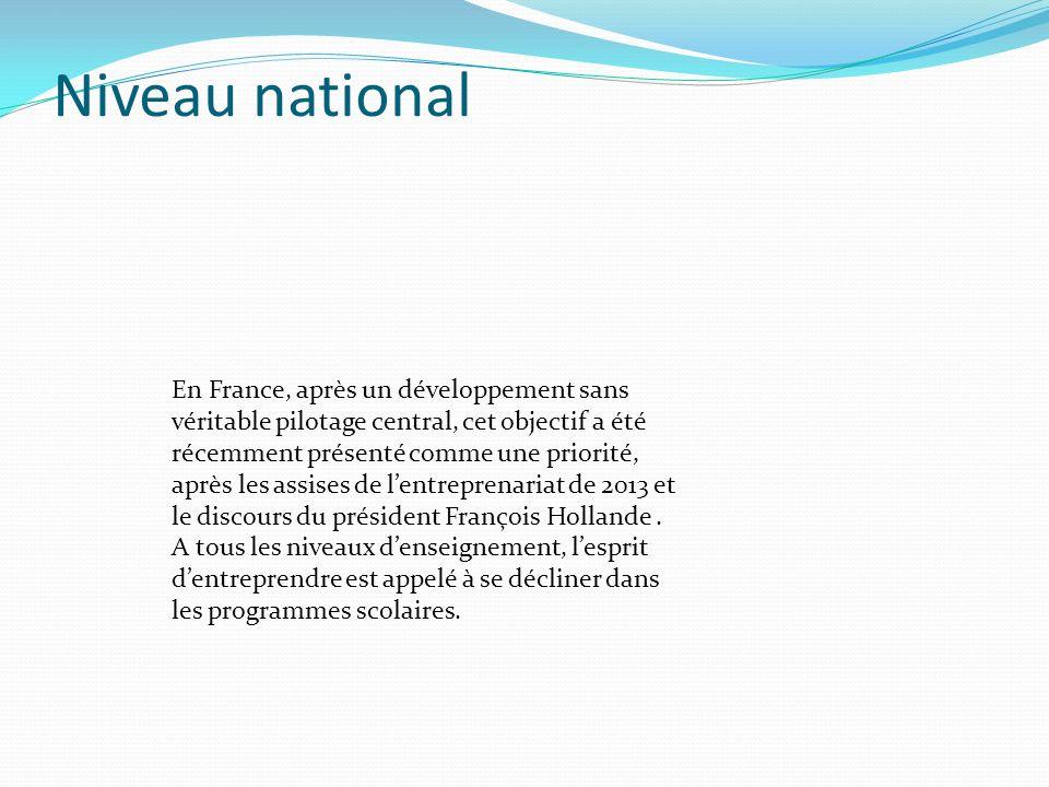 Niveau national En France, après un développement sans véritable pilotage central, cet objectif a été récemment présenté comme une priorité, après les assises de lentreprenariat de 2013 et le discours du président François Hollande.