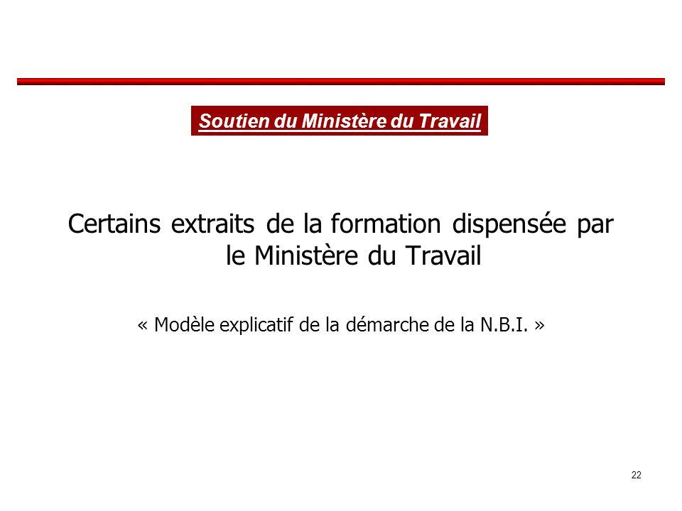 Certains extraits de la formation dispensée par le Ministère du Travail « Modèle explicatif de la démarche de la N.B.I.
