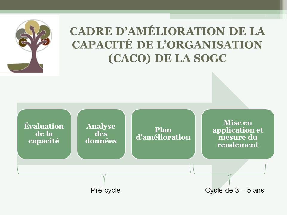 Évaluation de la capacité Analyse des données Plan damélioration Mise en application et mesure du rendement Pré-cycleCycle de 3 – 5 ans CADRE DAMÉLIORATION DE LA CAPACITÉ DE LORGANISATION (CACO) DE LA SOGC