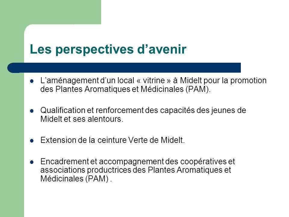 Laménagement dun local « vitrine » à Midelt pour la promotion des Plantes Aromatiques et Médicinales (PAM). Qualification et renforcement des capacité
